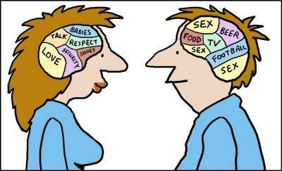 Интересные факты о мужчинах и женщинах: Два разных мозга — два разных мира